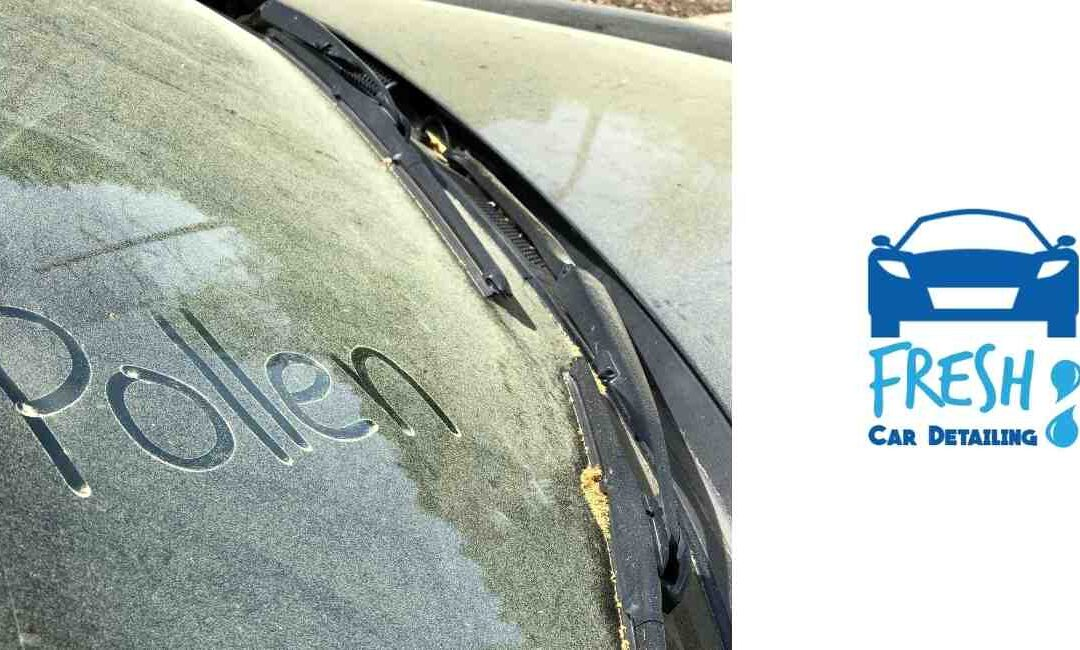 How to Remove & Keep Pollen From Your Car's Exterior & Interior